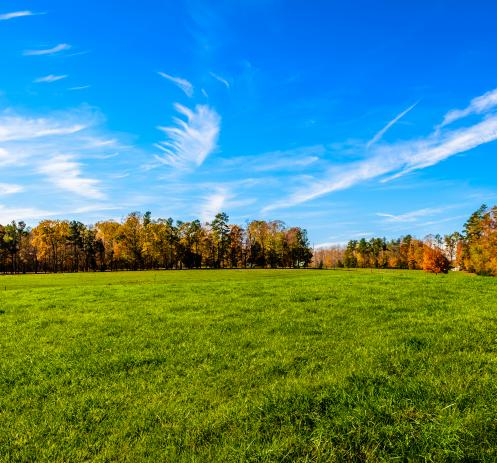 Recreational Land for Sale
